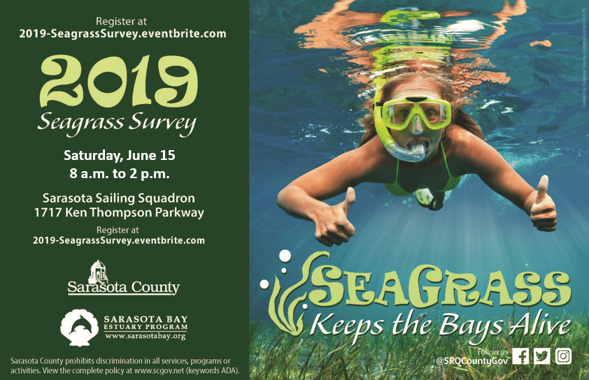 2019 Seagrass Survey Flyer