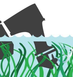 Engine Tilt to avoid seagrass icon