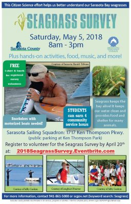 2018 Seagrass Survey flyer
