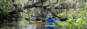 Kayakers in Phillippi Creek