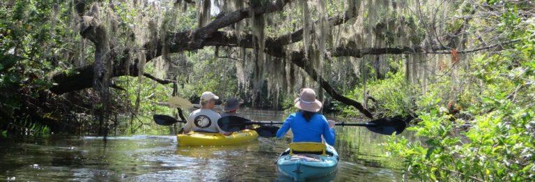 Kayakers in Phillippi Creek