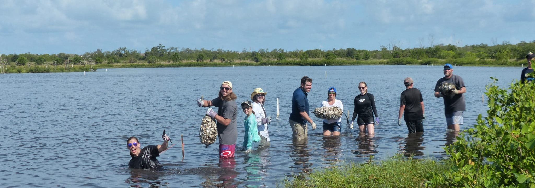 Volunteers in a line in water