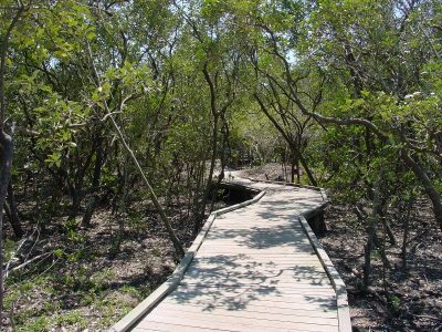 Boardwalk at Quick Point Nature Preserve