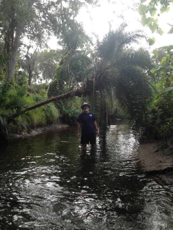 Researcher In Tidal Creek
