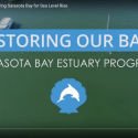 New Video! Preparing Sarasota Bay for Sea Level Rise