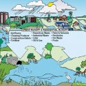 8 ways to reduce personal nutrient pollution