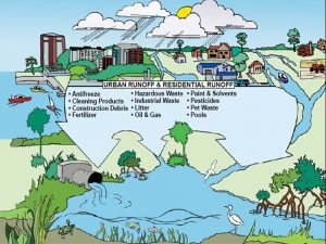 Stormwater Pollution Graphic Drawing showing stormwater pollution sources