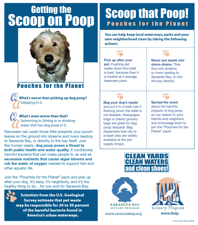 Facts about dog poop pollution running into the bay