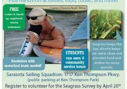 2018 Seagrass Survey flyer