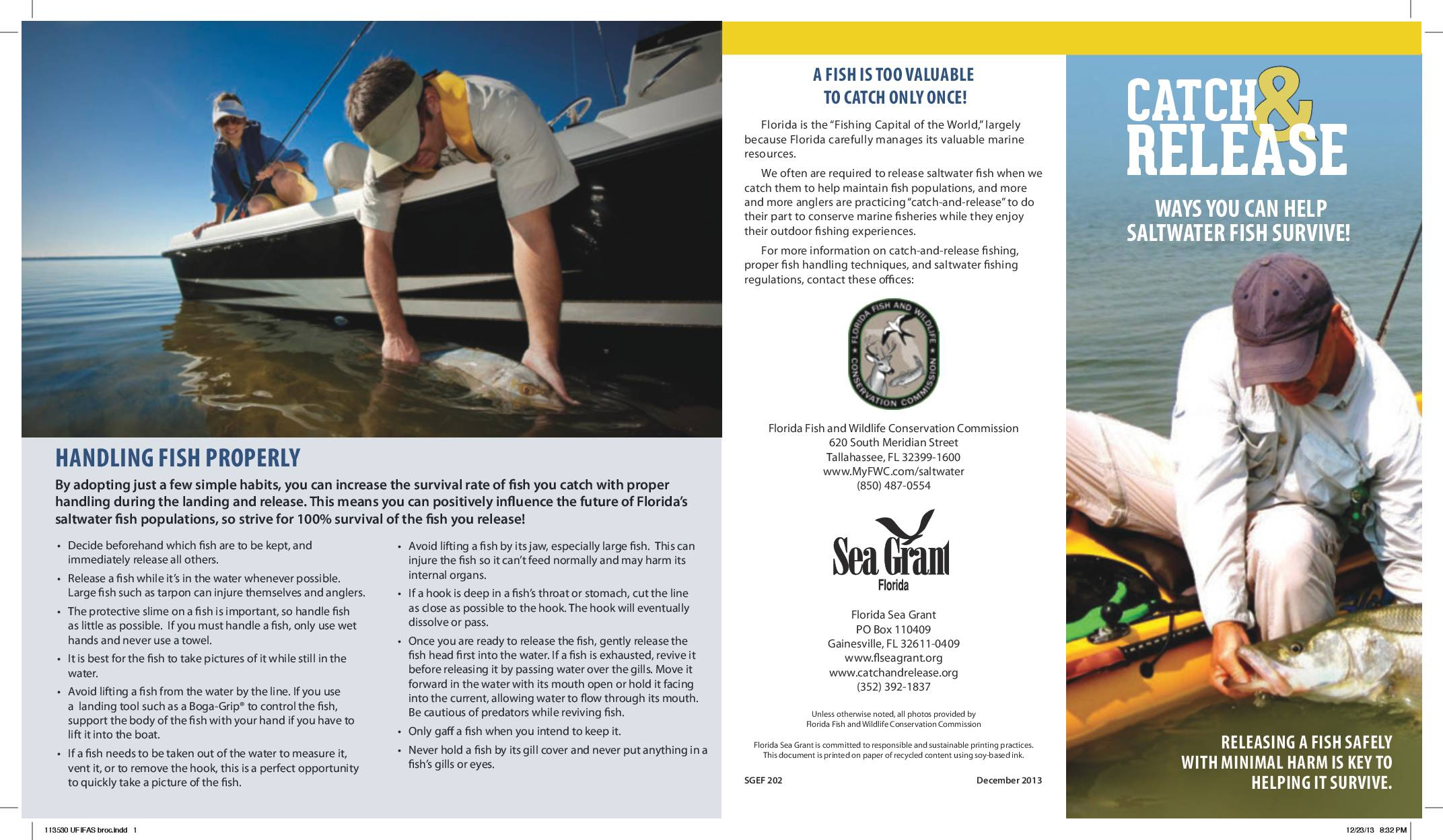 Brochure About Catch and Release